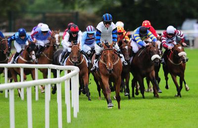 Profitable Horse Racing System - Find Out How the Professionals Make Their Money